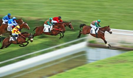 Franchissement de haie par 6 partants d'une course de chevaux support du jeu couplé